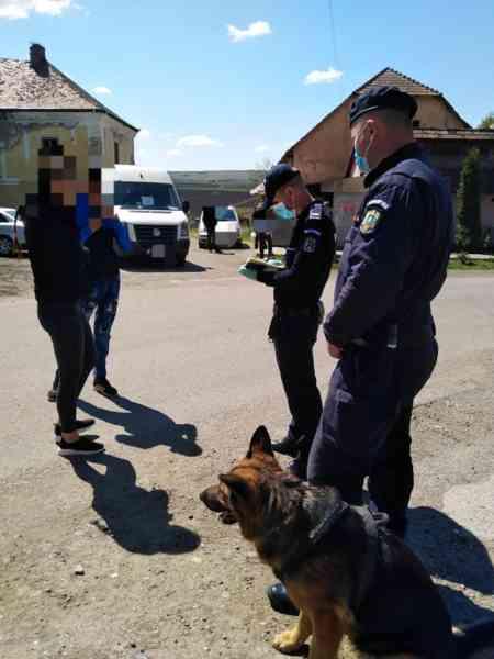Peste 100 de plimbăreți din Bistrița-Năsăud, amendați de forțele de ordine