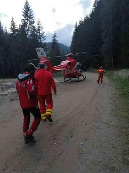 Tragic! Bărbat accidentat mortal, într-o pădure din Valea Mare