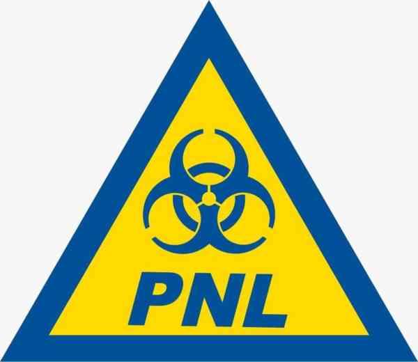 """PSD BN: """"Guvernarea PNL, prin incompetență și impostură, a adus țara în pragul dezastrului"""""""